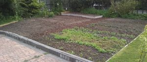 our new growing area